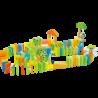 Rallye de dominos Grenouilles